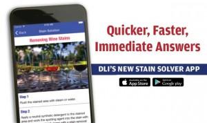 stain-solver-app